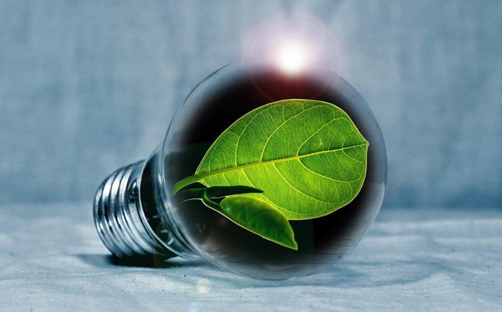 Qu'est-ce que l'électricité verte ?