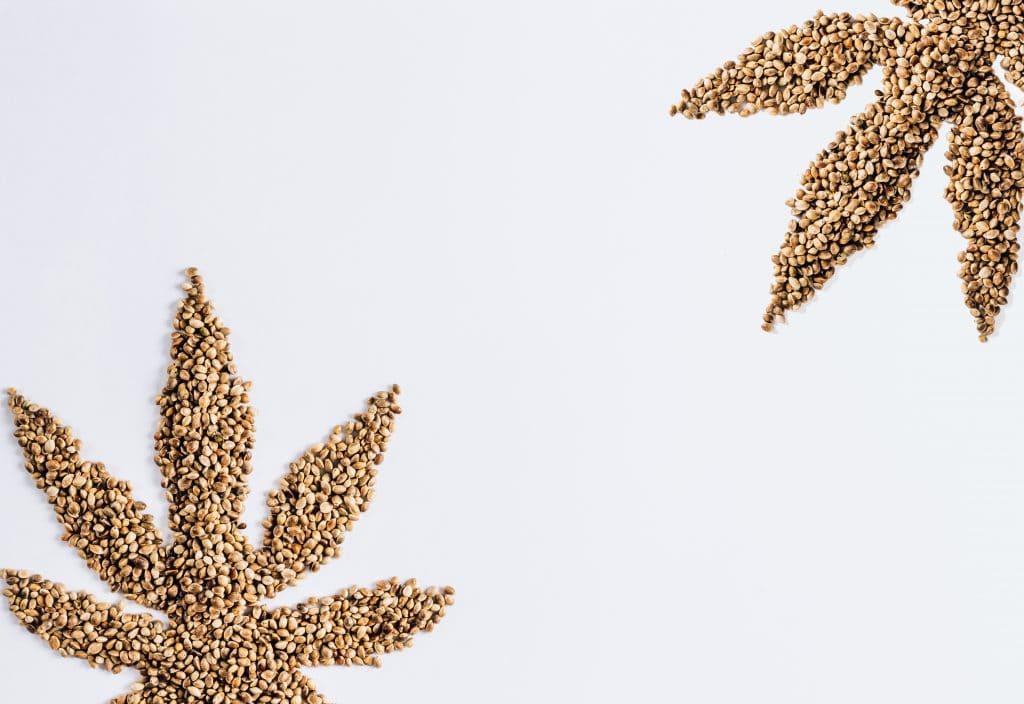 Graines de chanvre : dosage et utilisation